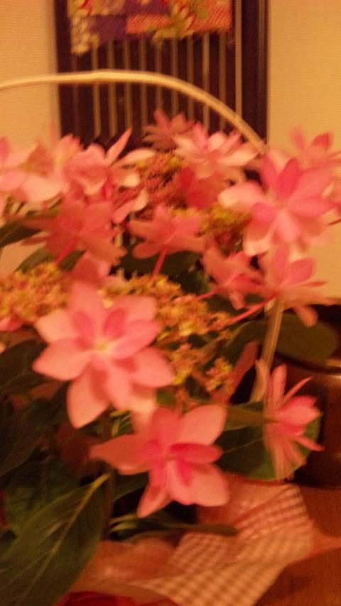 ☆母の日☆